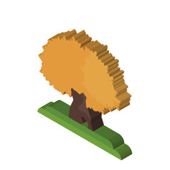 The Maples tree isometric right top view 3D icon