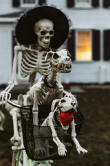 Skeleton Family on Halloween Bike Ride
