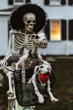 Skeleton Family on Halloween Bike Ride