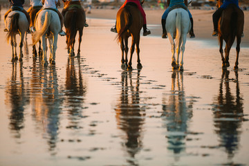 Group of unrecognizable people riding horses at the beach