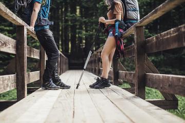 Hikers Standing on Wooden Bridge in Mountain