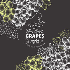 Grape berry design template. Hand drawn vector fruit illustration on chalk board. Engraved style vintage botanical background.