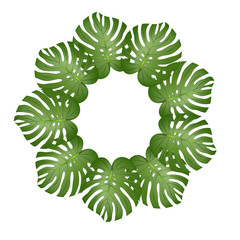 Philodendron Monstera Leaf Wreath