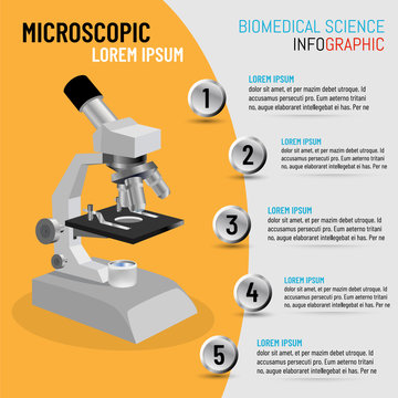 Vector illustration of infographic microscope in 3D with 5 step processes, Biomedical Science concept