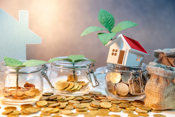 Property or real estate investment. Home mortgage loan rate. Saving money for future concept. Plant growing out of currency glass jar with house model, money bags and gold coin spilling on the table