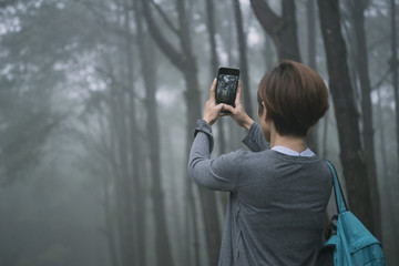 female traveler photographing with mobile phone and enjoying a beautiful nature forest.