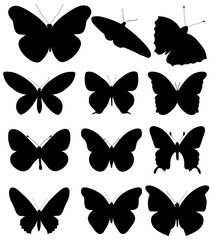 isolated, black silhouette butterfly, set