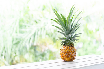 A mini pineapple with blur background in Thailand.