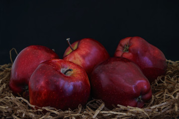 Red ripe apples on a black background