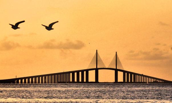 Sunshine Skyway Bridge / The Sunshine Skyway Bridge near Tamps, Florida