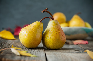Autumn harvest concept - Fresh ripe organic yellow pears with water drops on rustic wooden table, dark stone background. Vegetarian, vegan, healthy diet food. Selective focus