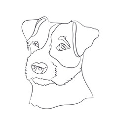 dog portrait, lines, vector
