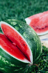 Watermelon sliced on a picnic in the park