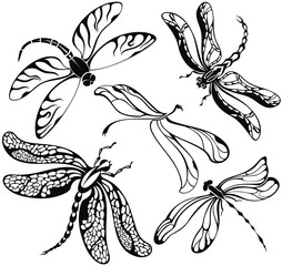 Set of black silhouettes dragonflies on white background.Vector illustration