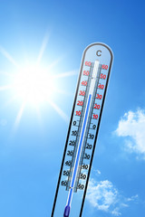 Thermometer 117