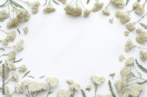 Flower frame of field flowers on white background flat lay top flower frame of field flowers on white background flat lay top view floral mightylinksfo