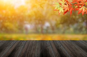 Fall and Autumn background. Colorful leaf and wood table with copy space for text
