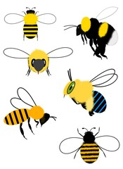 Collection of bees and bumblebees on white background