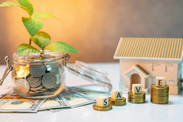 Real estate investment or property ladder. Home mortgage loan rate. Saving money for future concept. Plant growing out of coins in glass jar with dollar banknotes and house model on the table