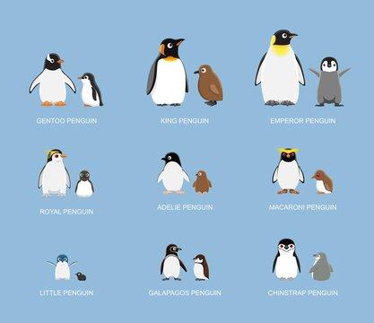 Penguin Babies Cartoon Emotion faces Vector Illustration