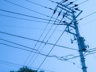 日本の電線