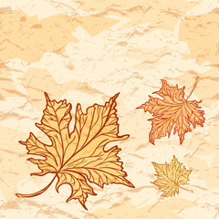 Vector grunge vintage background. Autumn maple leaves decoration.