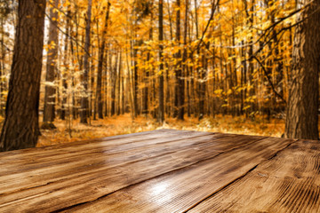 Table background and autumn forest