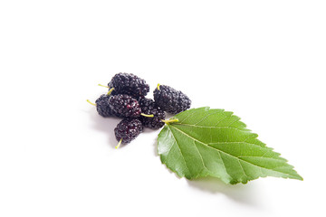 Heap of black mulberry fruit with leaf isolated on white.