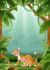 The leopard happy an activity in jungle