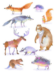 Wild animals, watercolor illustration