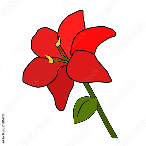 Red Flower Six Petals Green Leaf And Stem White Background