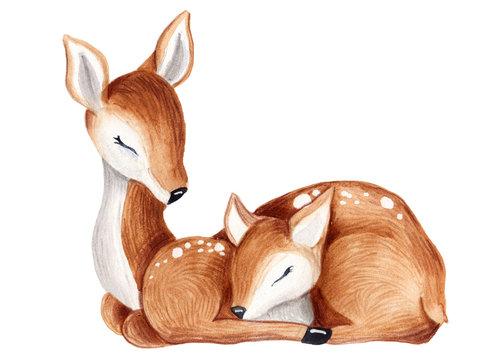Baby deer watercolor summer, autumn illustration