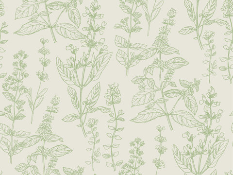 Hand drawn herbal sketch seamless pattern for surface design
