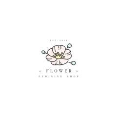 Vector template logo or emblem - feminine design - flower anemone. Logo in trendy linear style.
