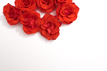 Floral pattern made of red roses on white background. Flat lay, top view. Valentine's background