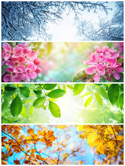 Four seasons. A pictures that shows four different pictures representing the four seasons: winter,...