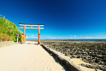 Washboard of Demon with torii in Aoshima, Miyazaki, Japan