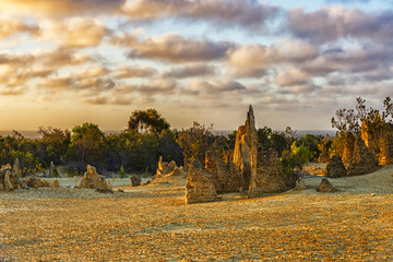 The Pinnacles at sunset, Nambung National Park, Western Australia, Australia