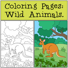 Coloring Pages: Wild Animals. Mother kangaroo with baby.