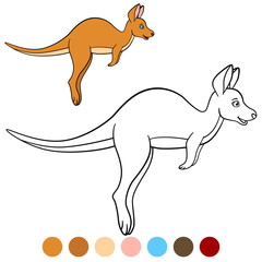 Color me: kangaroo. Little cute baby kangaroo runs.