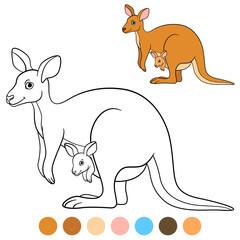 Color me: kangaroo. Mother kangaroo with her little baby.
