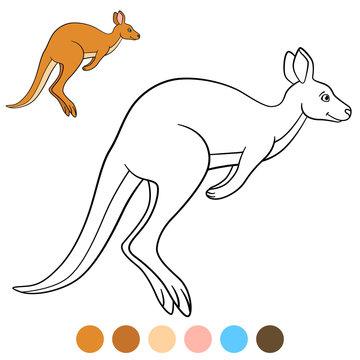 Color me: kangaroo. Cute beautiful kangaroo runs.