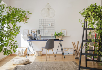 Desk and a wooden chair in a sunlit workspace interior for an illustrator with drawings, plants and white walls