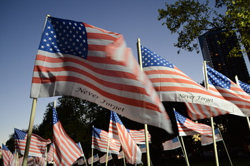 USA flags blowing in the wind