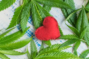 Love and marijuana. Red heart against the background of marijuana leaves.