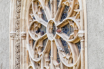 Pigeons resting on the gothic window of a historic church or cathedral