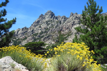 The Col de Bavella, a beautiful mountain range in Corsica, France