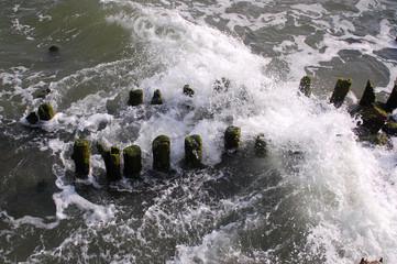 Baltic Sea 25