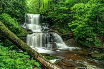 Water Fall - Rickets Glen PA