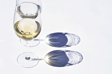 Glass of white wine in the sunlight  with shadow reflection effect and a empty copy space background